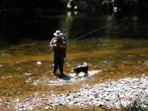 Fly Fishing Bavaria, dry fly floatant